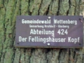 Oldtimer + Dünsberg_07 09 16_1501_bearbeitet-1