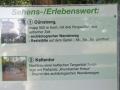 Oldtimer + Dünsberg_07 09 16_1621_bearbeitet-1