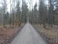 Friedelhausen_06 02 16_0137_bearbeitet-1