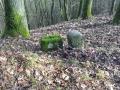 Friedelhausen_06 02 16_0163_bearbeitet-1