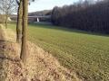 Friedelhausen_06 02 16_0183_bearbeitet-1