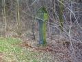 Grünberg-Vortour_04-03-17_2148_bearbeitet-1-Kopie-3