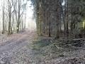 Grünberg-Vortour_04-03-17_2164_bearbeitet-1-Kopie-2