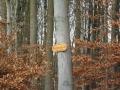 Lahn-Camino-1_03 02 16_0065_bearbeitet-1