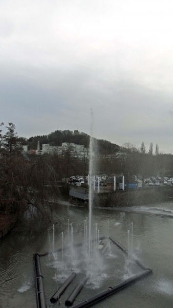 Springbrunnen - Kalmunt