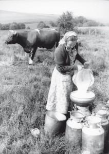 Abseihen der Milch um 1950, Foto: privat