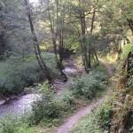 Wild-Romantisches Jammertal - Foto: Dörsbachhöhe