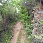 """Naturnah und aussichtsreich ist der Wanderweg """"In den Steilhängen der Lahn"""""""