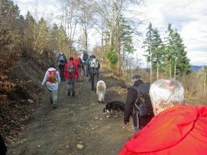 Wanderungen mit Hund mit der Weilburger Wanderschule
