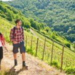 Lahnwanderweg: Durch die Weinberge bei Obernhof