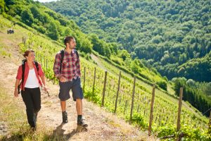 Lahnwanderweg: Durch die Weinberge bei Obernhof, Foto: Lahntal-Tourismus