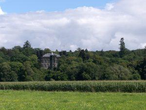 Schloss Friedelhausen, Von Sipalius - Eigenes Werk, CC BY-SA 3.0, https://commons.wikimedia.org/w/index.php?curid=18803704